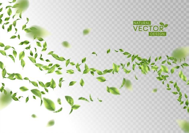 Grün fliegende oder abfallende blätter