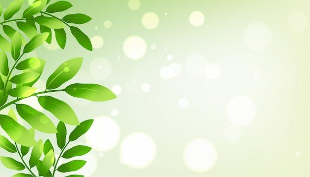 Grün hinterlässt hintergrund mit copyspace
