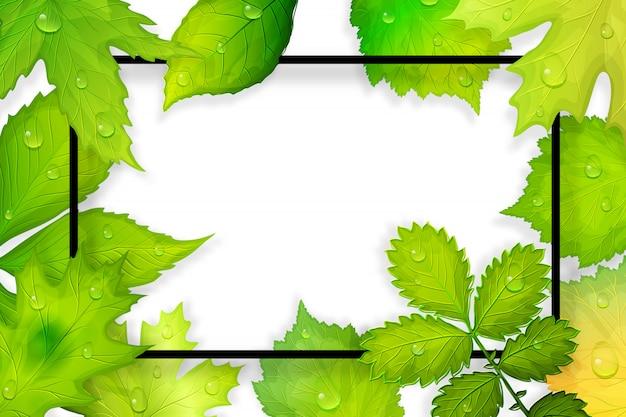 Grün lässt rahmen. illustration