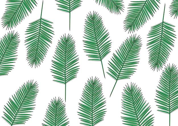 Grüne areca-palme