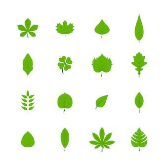Grüne bäume blätter flache ikonen satz von eiche aspen linde ahorn kastanie klee pflanzen isoliert vektor-illustration