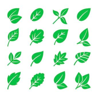 Grüne blätter symbole. vektor-blatt-symbole illustration, bäume blätter zeichen isoliert auf weiss für natürliches logo und grüne etiketten