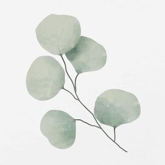 Grüne blätter zweig illustration