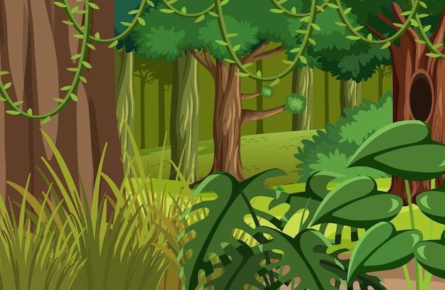 Grüne dschungel-naturlandschaft