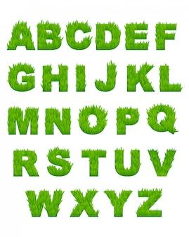 Grüne grasbuchstaben des alphabets