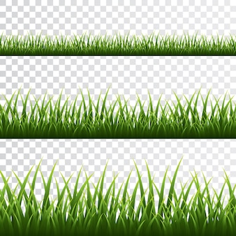 Grüne grasgrenze gesetzt auf transparentem hintergrund.