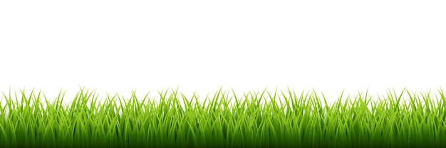 Grüne grasgrenze gesetzt
