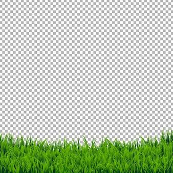 Grüne grasgrenze isoliert, isoliert auf transparent