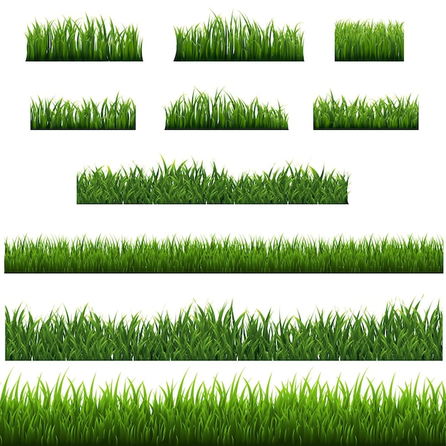Grüne grasgrenze isoliert mit