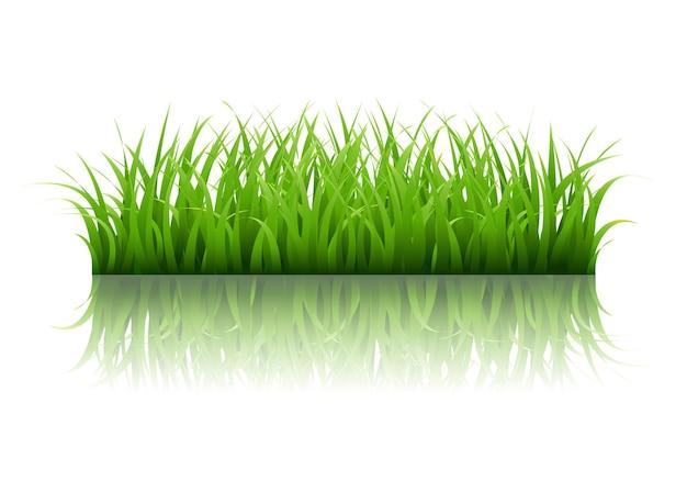 Grüne grasgrenze mit gradient mesh illustration