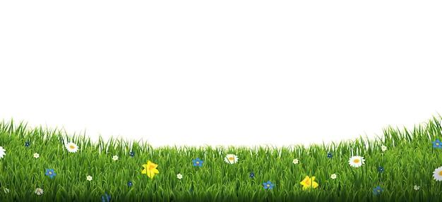 Grüne grasgrenze mit isolierten blumen