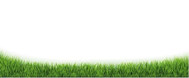 Grüne grasgrenze und