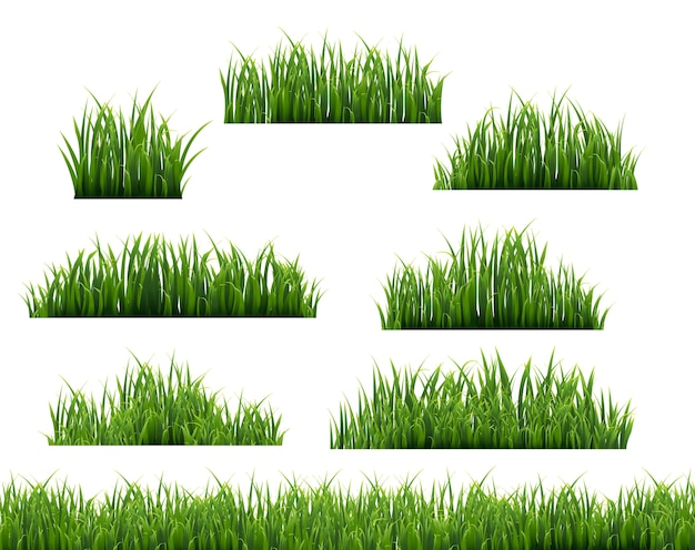 Grüne grasillustration