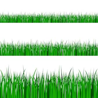 Grüne grasränder gesetzt. frühlings- oder sommerpflanzenfeldrasen.