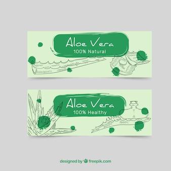 Grüne hand gezeichnete aloe vera banner