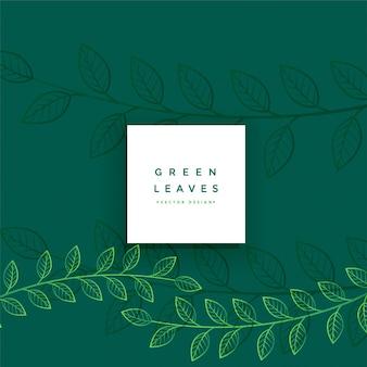 Grüne mit blumenlinie verlässt hintergrund