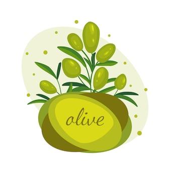 Grüne olivenzweige.