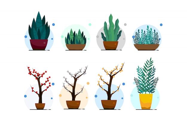 Grüne pflanzen in töpfen isoliert auf weißem hintergrund