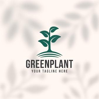 Grüne pflanzenlogoschablone