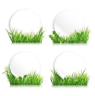 Grüne realistische grasfahnen frühlingswiese mit pflanzenlayout für landwirtschaftliche produktwerbung