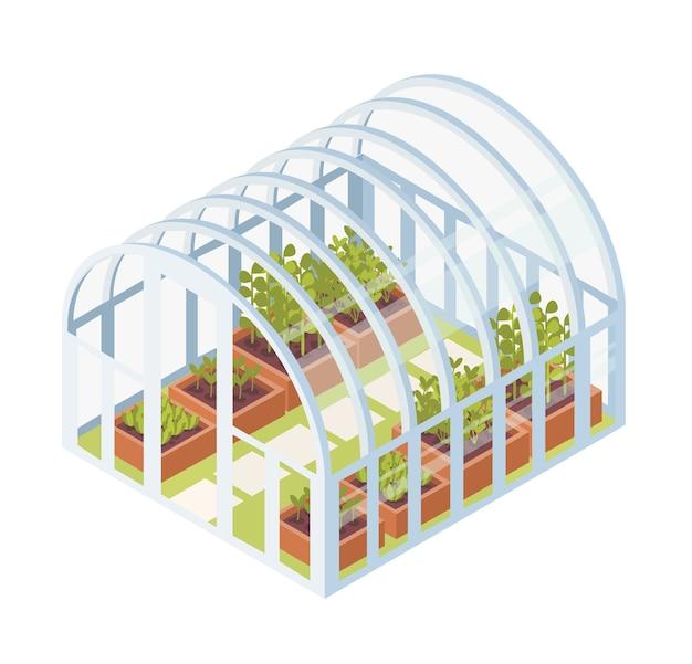 Grüne sämlinge, sprossen oder pflanzen, die im glasgewächshaus wachsen. isometrisches kuppelgewächshaus mit gartenbetten für hausgartenarbeit lokalisiert auf weißem hintergrund. illustration im flachen stil