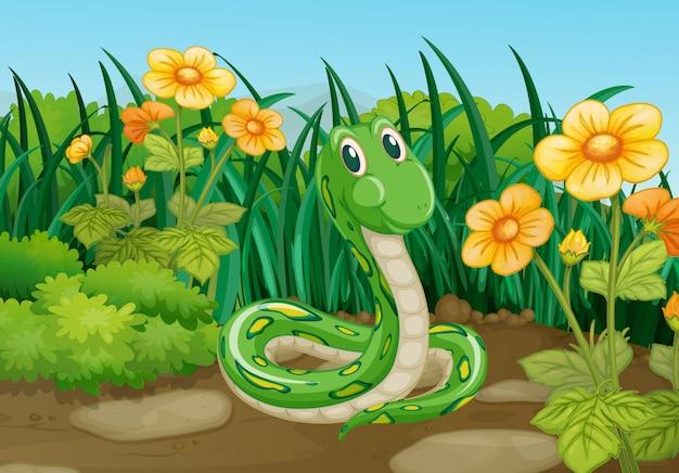 Grüne schlange im garten