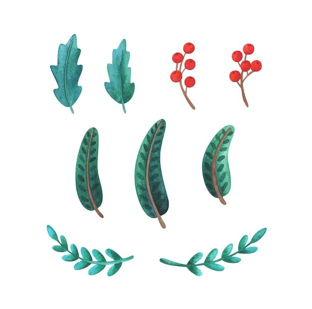 Grüne stechpalme, fichtenzweig, rote beeren. satz weihnachtsdekorationspflanzen. neujahrsdesign