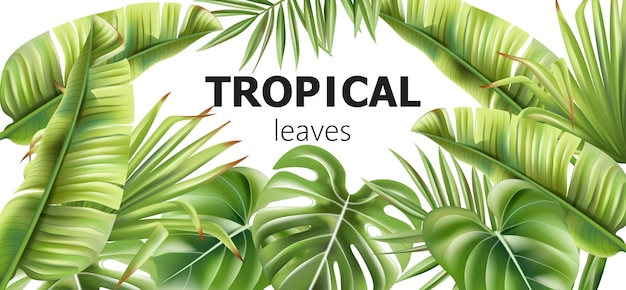 Grüne tropische blätter banner mit platz für text