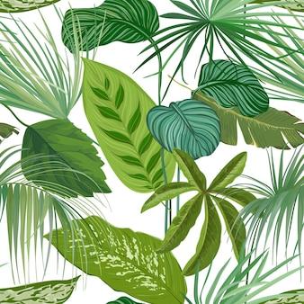 Grüne tropische blätter, dekorative tapetenverzierung des regenwaldes, nahtloses muster oder botanischer hintergrund. realistische spathiphyllum cannifolium zweige, papier- oder textildruck. vektorillustration