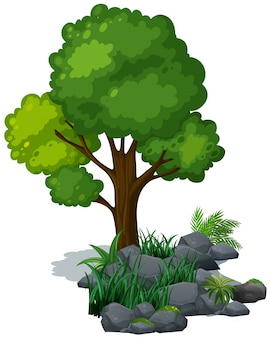 Grüner baum und gras auf den felsen