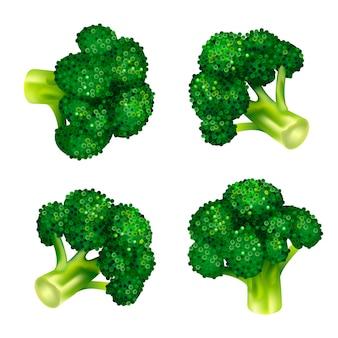 Grüner brokkoliikonensatz. isometrischer satz grüne brokkolivektorikonen