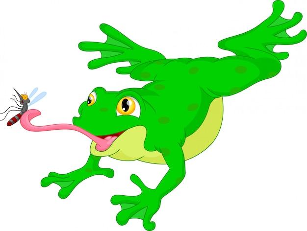 Grüner frosch, der eine moskitokarikatur fängt