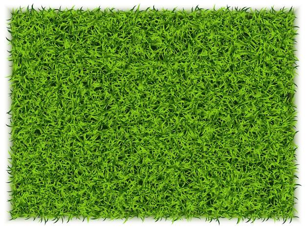 Grüner gras-rechteck-hintergrund. eco home konzept. 3d illustration