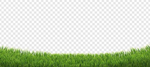 Grüner grasrand isolierter transparenter hintergrund mit verlaufsgitter,