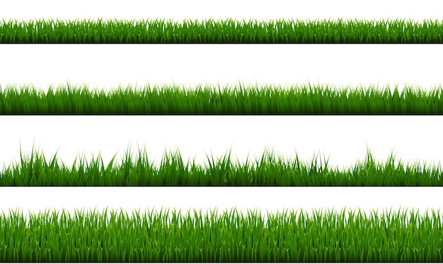 Grüner grasrand isolierter weißer hintergrund