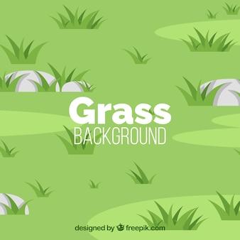 Grüner hintergrund mit gras und steinen
