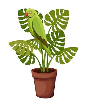 Grüner papagei sitzt auf topfpflanze. illustration auf weißem hintergrund.