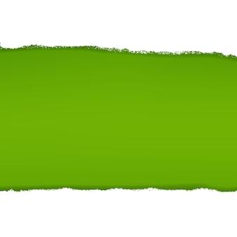Grüner pinsel