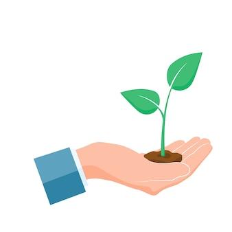 Grüner spross wächst in der handfläche auf