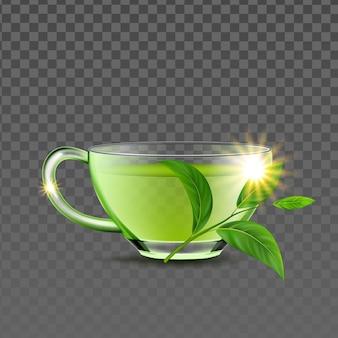 Grüner tee-tasse und natürlicher zweig verlässt vektor. gebraut leckeres getränk glasbecher bio-kräuter-pflanzen-zutat für die zubereitung von traditionellen getränken. aromatische frühstücksflüssigkeit vorlage realistische 3d-darstellung