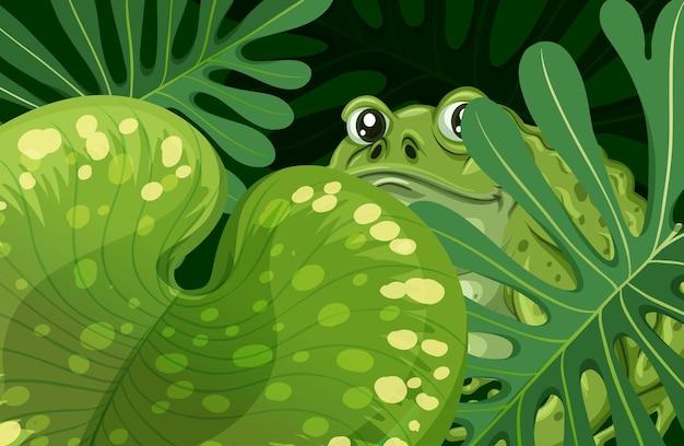 Grüner tropischer blätterhintergrund