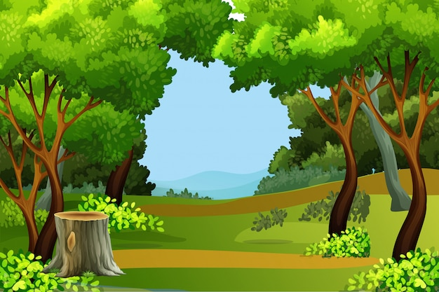 Grüner waldszenenhintergrund