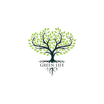 Grünes baumlogo