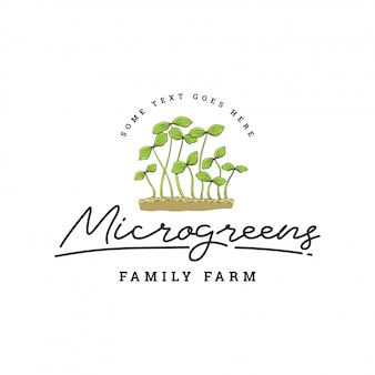 Grünes blatt oder pflanze logo template
