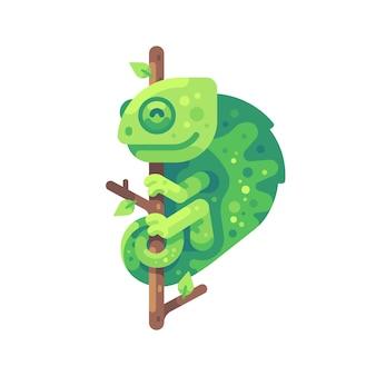 Grünes chamäleon, das auf einem baumast sitzt