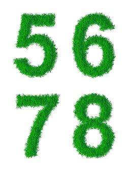 Grünes gras-alphabet, ziffern 5, 6, 7, 8