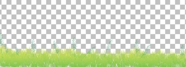 Grünes gras auf transparentem hintergrund