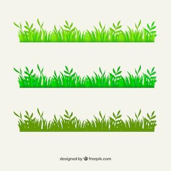 Grünes gras grenze