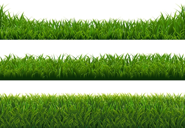 Grünes gras großes set isoliert