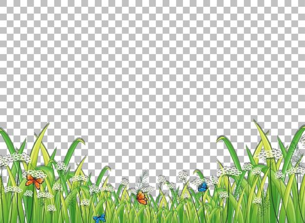 Grünes gras mit schmetterlingen auf transparentem